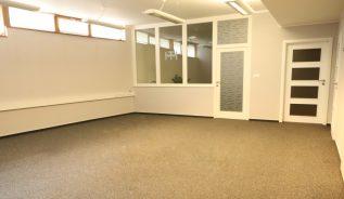 Pronájem kanceláře 250m2 - 3