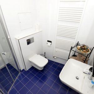 Prodej bytu 1+kk, 46m2, Vyšehradská, Praha 2 – Nusle - 4